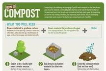 Composting / It's all about taking organic matter and transforming it into fertilizer.