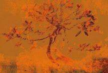 Tom Ruzicka / Canvas Print / Digital Art / Photography