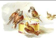 Sparrow Mus & co / mussen en vrienden