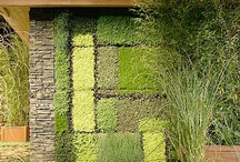 Vertical Gardens / these capture my imagination and make me want to make my own wall / by Anne King