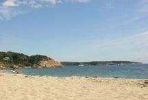 Cape Ann, Manchester by the Sea / by Pamela Barton