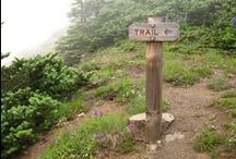 Trail Running / by Amanda Rice