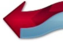 Logo & Graphics