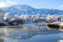 árboles blancos y paisajes invierno / espectaculares imágenes  de árboles color blanco y paisajes en invierno.