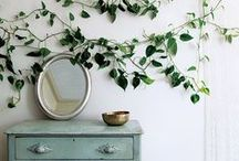Cozy Home Designs