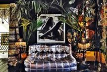 Interior; DARK ECLECTIC