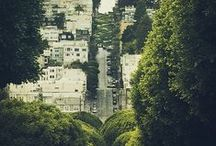 San Francisco / life in the bay area / by Carmen Ruelas