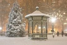 Winter Wonderland / by Pamela Clark