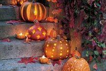 Holidays: Halloween Tricks and Treats