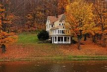 Autumn Beauty / One of my favorite times of the year / by Jessica Lovejoy