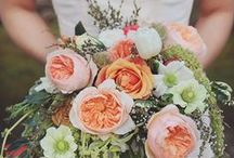 Flowers to Hold - Orange, Peach & Coral Bouquets / Wedding bouquets in Orange, Peach & Coral / by Dandie Andie Floral Designs