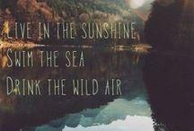 Wild & Free / by Jessica Lovejoy