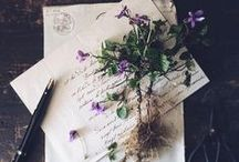 floral styling and photography / Gorgeous floral still life photos