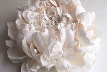 paper art and flowers / a collection of paper flowers, paper cut art from current emerging paper artists