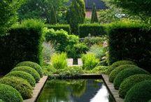 Inspirerende tuinen / Mooie voorbeelden van allerlei tuinen