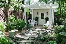 Garden Ideas / Inspirational Garden Ideas / by Mayer Blue