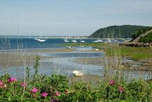 Home turf / Ipswich, Cape Ann and the North Shore. / by Maria Hebbel