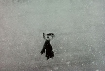 black and white winter / my black and white winter