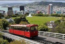 Wellington Scenery
