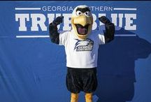 GUS / GUS--The mascot of Georgia Southern University / by Georgia Southern University