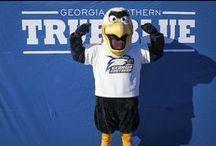 GUS / GUS--The mascot of Georgia Southern University