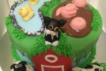 Hayley's cakes