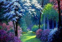 Blommor / Trädgårdar med fina blommor