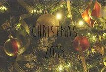 Christmas 2015 / Wonderful displays of the holidays.