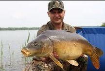 """Łowisko """"RUDY"""" / Specjalistyczne łowisko karpiowe """"Rudy"""" w Rudzie Żmigrodzkiej działa od 11 maja 2013 roku. Na łowisku o powierzchni ponad 120 ha do dyspozycji wędkarzy jest 60 stanowisk. http://lowiska-stawymilickie.pl/"""