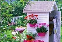 Abrigos de Jardim & Estufas / Garden Shed & Greenhouse