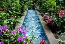 The Secret Garden / Magical gardens, birdhouses & more!