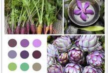 Color - Living with Color & Texture / Gorgeous hues, colors, palettes & textures that surround us.