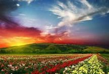 God's Green Earth / Earthly Places of Breathtaking Beauty and Divine Creation