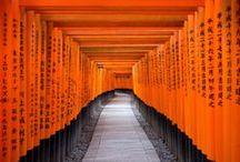 Pathways / Enticing, alluring, frightening...