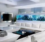 Aquaria / Aquarium ideas for potential customers.