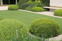 garden ideas / by crumble&custard