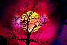 Moon Beauty / Some photos, some art, all beautiful depictions of the moon and the landscapes it glows sown on. / by Sherry Leggett