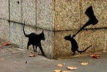 black cats, dead rats