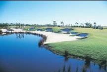 Golf Course / The gorgeous golf course at Pacific Harbour Golf and Country Club on Bribie Island. Definitely worth a visit next time you're planning a golfing trip!