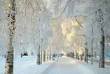 Winter photography / Inspiration