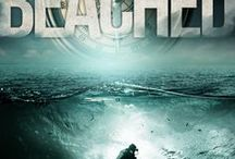 BEACHED-the 2nd Mer Cavallo Mystery / The Keys, Treasure, and Scuba. Dive into the mystery!