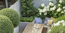 GARDEN | Small Gardens | Secret Gardens / A collection of ideas for small Victorian Gardens. The average Victorian or Edwardian Terrace has a small narrow garden or yard that can be designed to maximise space. I have a Victorian walled secret garden and I am looking for inspiration! / by Anthi Leoni Decor