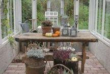Greenhouse / interier