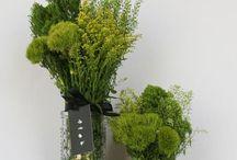 Green filler / Wedding & event displays