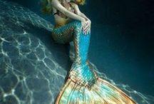 zeemirmin staarten en zwem kleeding