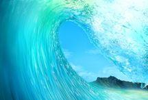 Ocean Adventures / by Kristyn W.