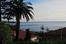 Property Offers/Italian Coast / Best property offers in the Italian Riviera! Check out!