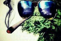 The Green Medicine / Smoke life