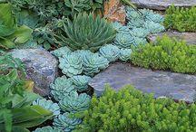 Daydreams for home & garden / Creative ideas for home & garden