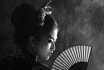 Geisha project